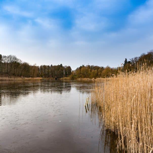 Langer See in Reichenow.